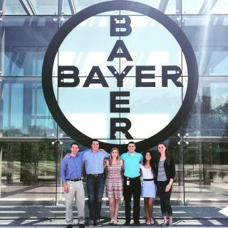 Bayer Andrea Intern