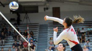Elisabeth Sems Volleyball