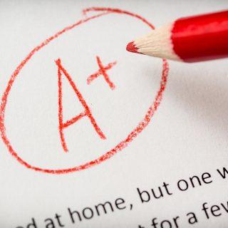 Grading term paper or school essay a plus